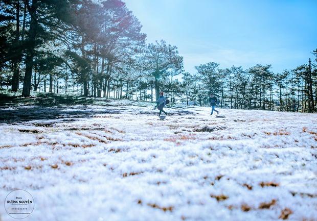 Cánh đồng tuyết đẹp đến ngỡ ngàng ở Đà Lạt - Ảnh 13.