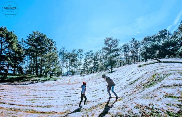 Cánh đồng tuyết đẹp đến ngỡ ngàng ở Đà Lạt - Ảnh 11.
