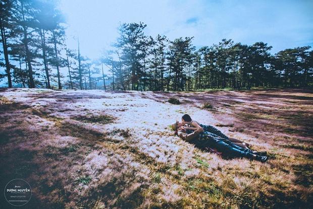 Cánh đồng tuyết đẹp đến ngỡ ngàng ở Đà Lạt - Ảnh 7.