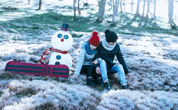 Cánh đồng tuyết đẹp đến ngỡ ngàng ở Đà Lạt - Ảnh 2.