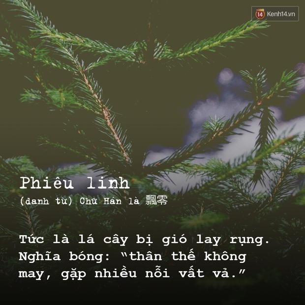 Đố bạn dịch được 9 từ tiếng Việt sau ra tiếng Anh - Ảnh 9.