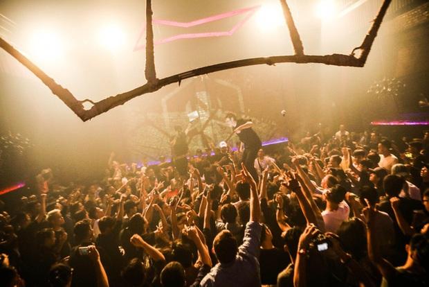 EDM tiếp tục là xu hướng âm nhạc dẫn đầu trong năm 2016 - Ảnh 10.