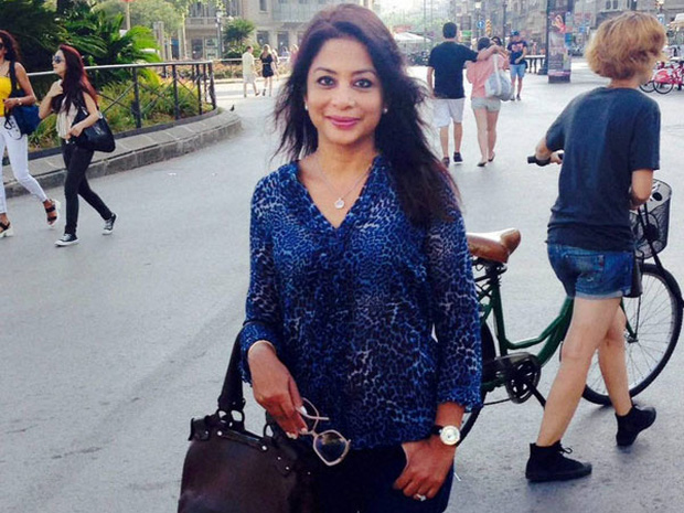 Tình tiết gây sốc về vụ án nữ tỷ phú Ấn Độ xinh đẹp giết con gái ruột vì sợ phân chia tài sản - Ảnh 2.