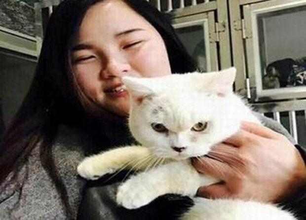 Mua thú cưng nhưng không có tiền nuôi, cô gái trẻ lột da mèo trả lại cho bà chủ cửa hàng - Ảnh 3.