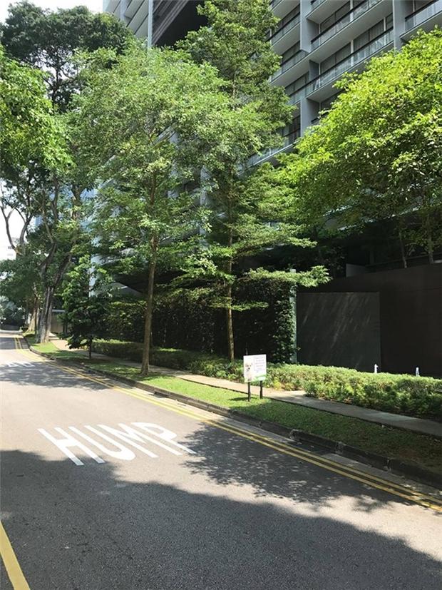 Sau biệt thự dát vàng ở TP HCM, Lý Nhã Kỳ tiếp tục tậu penthouse siêu sang hơn 100 tỷ đồng tại Singapore - Ảnh 1.