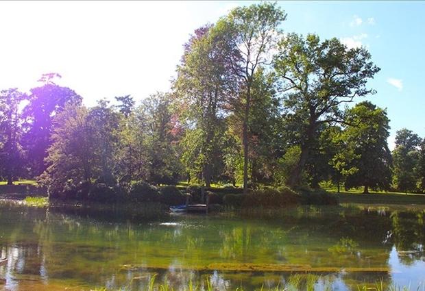 Cận cảnh nơi an nghỉ cuối cùng phủ bóng cây xanh của Công nương Diana - Ảnh 6.