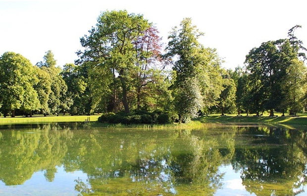 Cận cảnh nơi an nghỉ cuối cùng phủ bóng cây xanh của Công nương Diana - Ảnh 9.