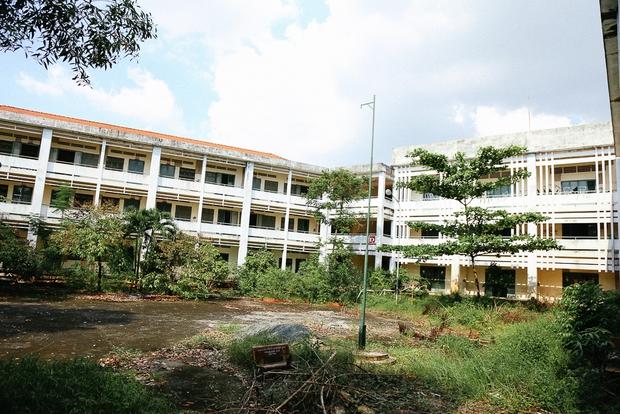 Cảnh u ám bên trong ngôi trường tiểu học 20 tỷ đồng bị bỏ hoang gần 10 năm giữa Sài Gòn - Ảnh 13.