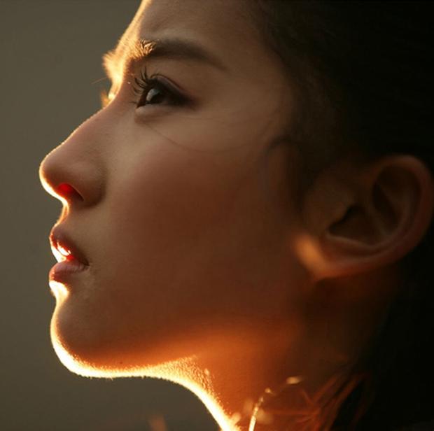 Lưu Diệc Phi tròn 30 tuổi: Hành trình nhan sắc đẹp hoàn hảo từ nhỏ tới lớn - Ảnh 13.