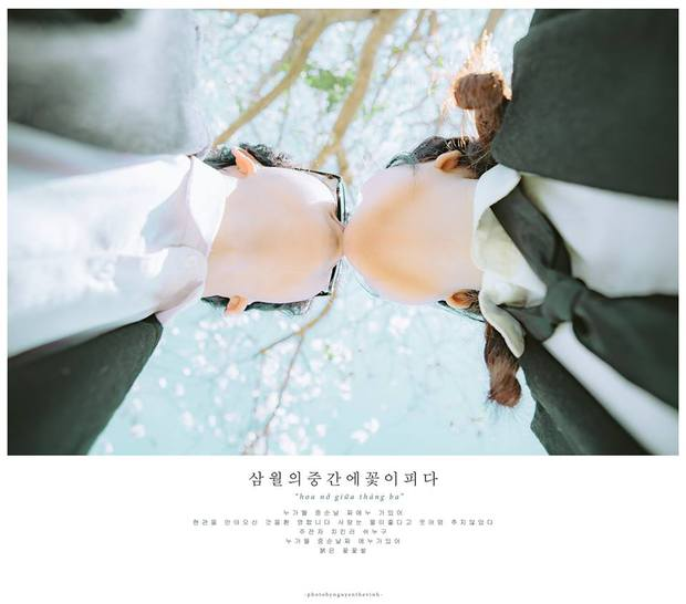 Không phải Nhật Bản đâu, bạn đang xem ảnh hoa ban trắng tuyệt đẹp ở Đà Lạt đấy! - Ảnh 12.