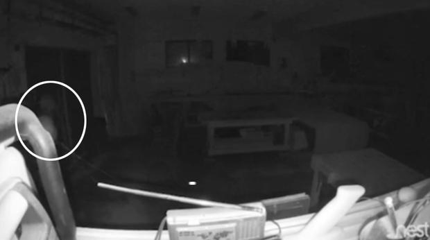 Lắp camera giám sát trong nhà, chàng trai hoang mang khi thấy bóng trắng và âm thanh lạ vào lúc 3h sáng - Ảnh 2.