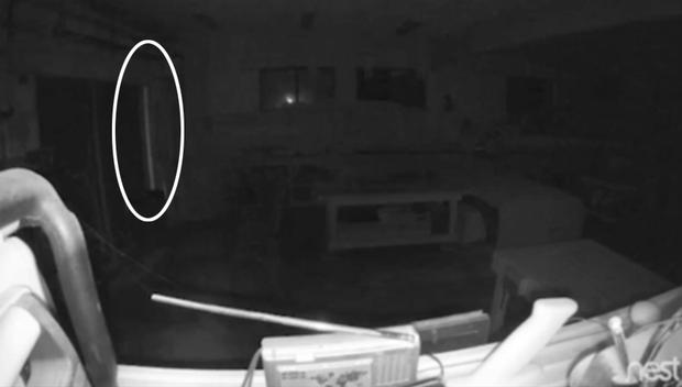 Lắp camera giám sát trong nhà, chàng trai hoang mang khi thấy bóng trắng và âm thanh lạ vào lúc 3h sáng - Ảnh 3.