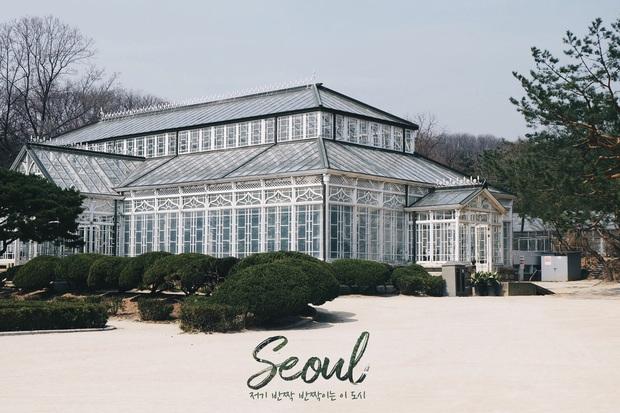 Hàn Quốc: Nếu không biết đánh son, không shopping thì mình đi đâu nơi kinh đô nhan sắc này? - Ảnh 6.