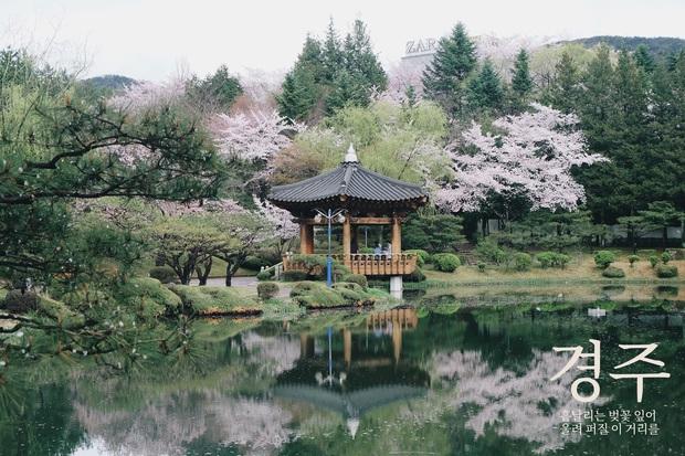 Hàn Quốc: Nếu không biết đánh son, không shopping thì mình đi đâu nơi kinh đô nhan sắc này? - Ảnh 21.