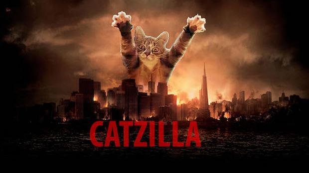 Phì cười với 10 pha chế ảnh mèo tinh nghịch của dân mạng - Ảnh 6.