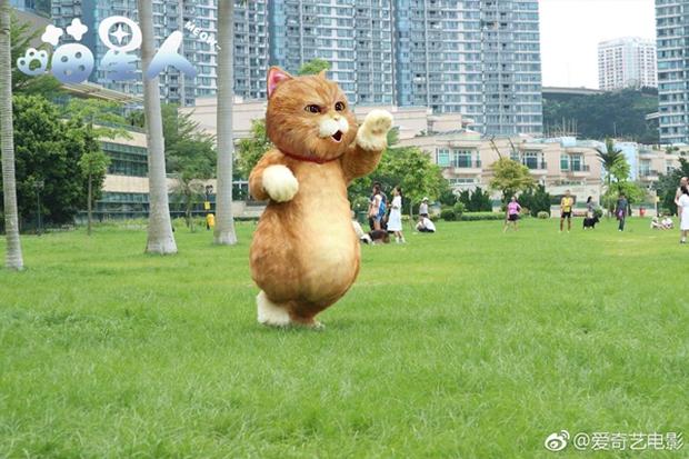 7 thú cưng đáng yêu lạc lối mà ai cũng đổ trên màn ảnh Hoa Ngữ - Ảnh 37.