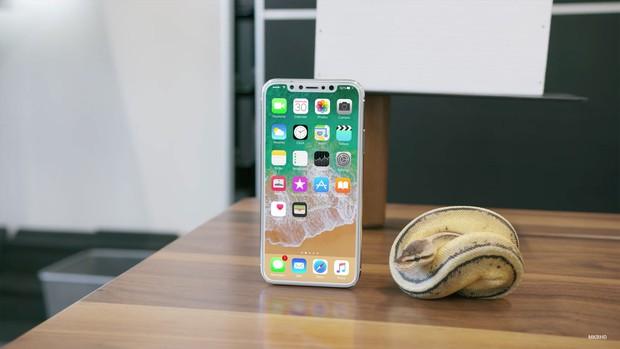 iPhone 8 tiếp tục lộ diện với thiết kế đẹp đến mê mẩn, iFan đã có thể mỉm cười - Ảnh 2.