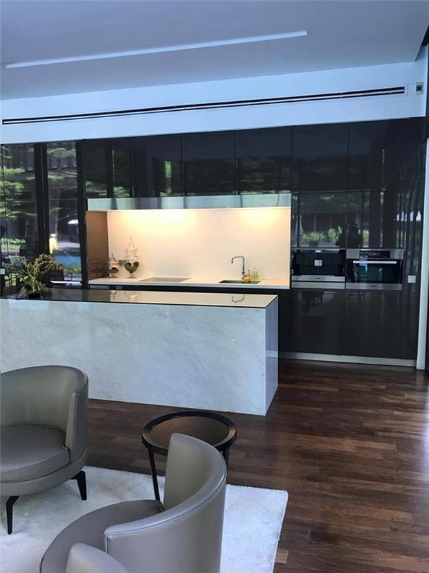 Sau biệt thự dát vàng ở TP HCM, Lý Nhã Kỳ tiếp tục tậu penthouse siêu sang hơn 100 tỷ đồng tại Singapore - Ảnh 5.