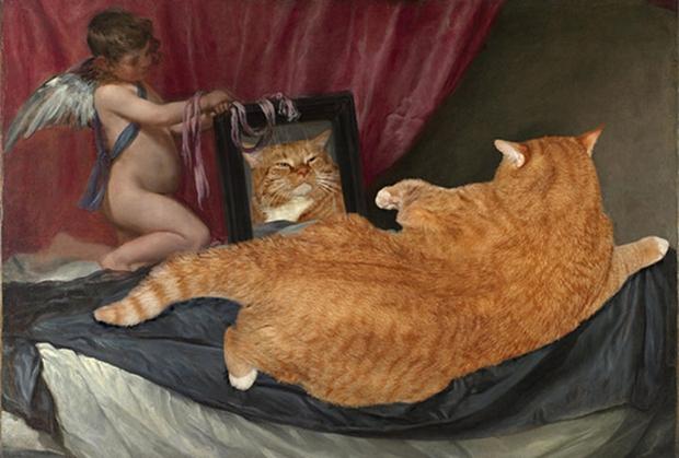Chùm ảnh chế mèo béo hóa thân thành nàng thơ trong các bức họa nổi tiếng - Ảnh 19.