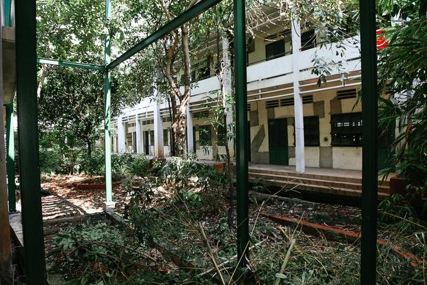Cảnh u ám bên trong ngôi trường tiểu học 20 tỷ đồng bị bỏ hoang gần 10 năm giữa Sài Gòn - Ảnh 2.