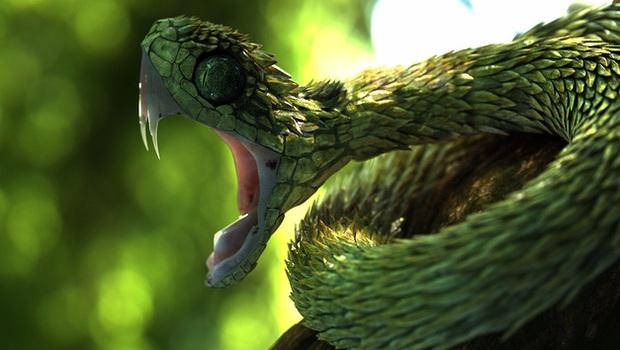 Hóa ra loài rắn trong bản hit mà Taylor Swift mới tung ra không hề tầm thường - Ảnh 5.