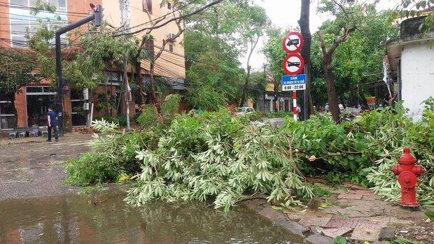 Hình ảnh tan hoang sau cơn bão số 2 ở miền Trung - Ảnh 6.