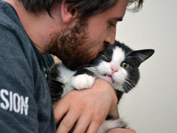 16 chú mèo ghét cay ghét đắng việc selfie cùng chủ nhân - Ảnh 21.