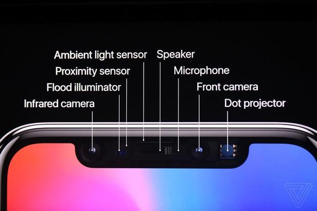 iPhone X tuyệt vời là thế, nhưng ai cũng thất vọng vì điểm này trên màn hình - Ảnh 2.