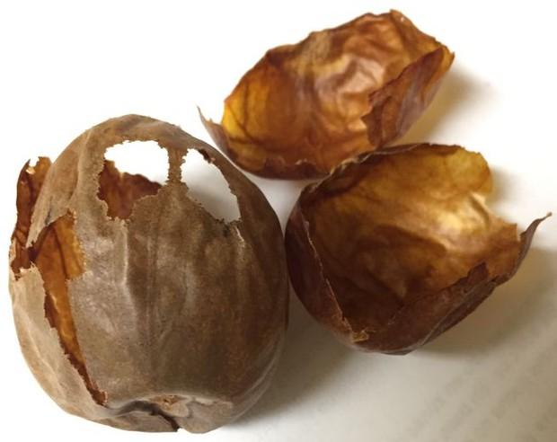 Hóa ra cả ngàn năm nay chúng ta đã ăn thức quả ngon tuyệt này sai cách - Ảnh 2.