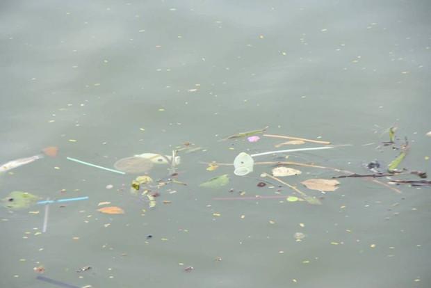 Hà Nội: Bao cao su nổi trắng một góc hồ Tây, người dân trèo thuyền ra vớt - Ảnh 8.
