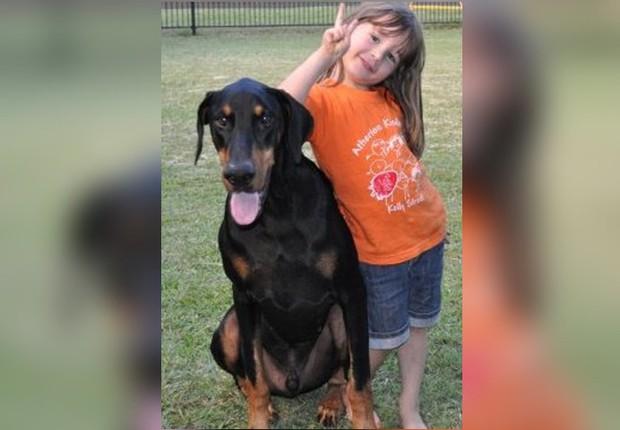 Mẹ hốt hoảng khi chó doberman vừa nhận nuôi tha con gái nhỏ ném đi xa cả mét, nhưng hóa ra đó là hành động anh hùng - Ảnh 5.