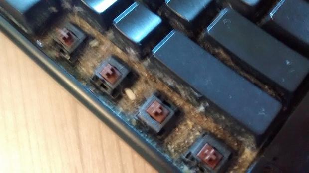 Cận cảnh quá trình dọn dẹp chiếc bàn phím 6 năm không tắm này sẽ khiến bạn nổi da gà - Ảnh 1.