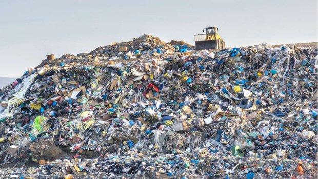 Tin mừng: Phát hiện nấm ĂN RÁC NHỰA ở ngay tại bãi rác khổng lồ của con người - Ảnh 1.