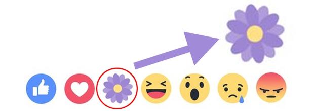Thả hoa nhiều trên Facebook như thế, nhưng liệu bạn có biết ý nghĩa và thể loại hoa màu tím này không? - Ảnh 1.