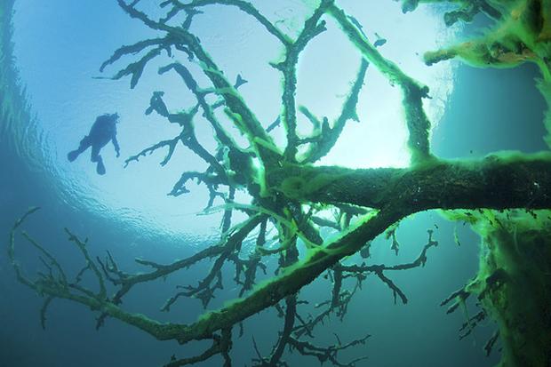 Hồ không đáy Goluboe - bí ẩn chết chóc đáng sợ bậc nhất hành tinh - Ảnh 6.