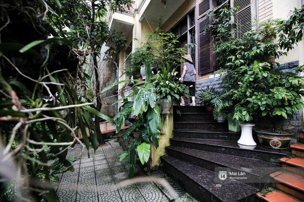 Căn nhà cổ kính, rợp bóng cây xanh của ông trùm Phan Thị - NSND Hoàng Dũng - Ảnh 4.