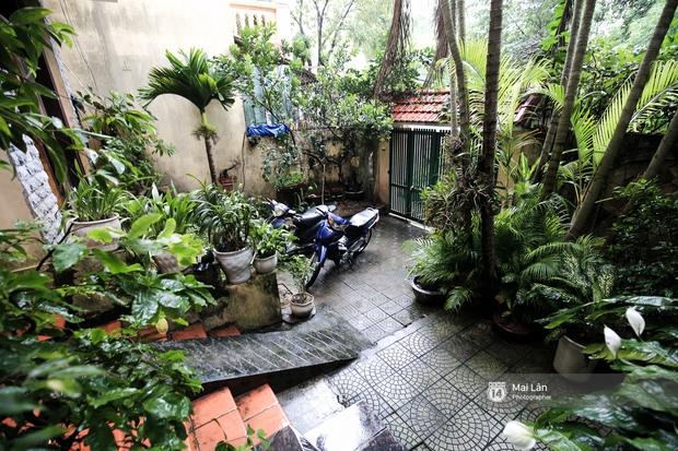 Căn nhà cổ kính, rợp bóng cây xanh của ông trùm Phan Thị - NSND Hoàng Dũng - Ảnh 2.