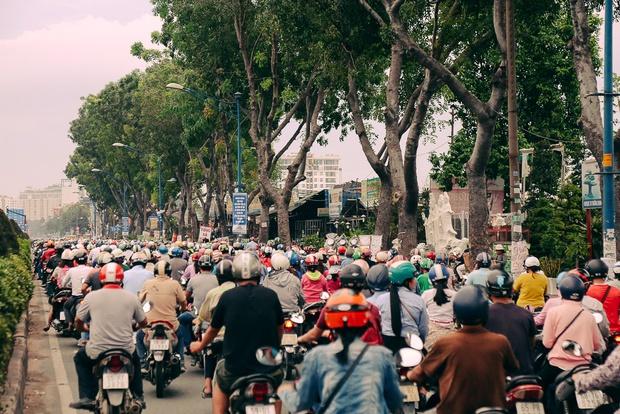 Hàng chục gian hàng gần sân bay Tân Sơn Nhất ồ ạt thanh lý chó, gà, cây cảnh, giao thông Sài Gòn hỗn loạn - Ảnh 13.