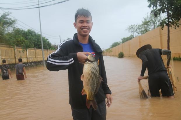 Sau bão số 10, người dân Quảng Bình quăng chài, thả lưới bắt cá giữa phố - Ảnh 6.