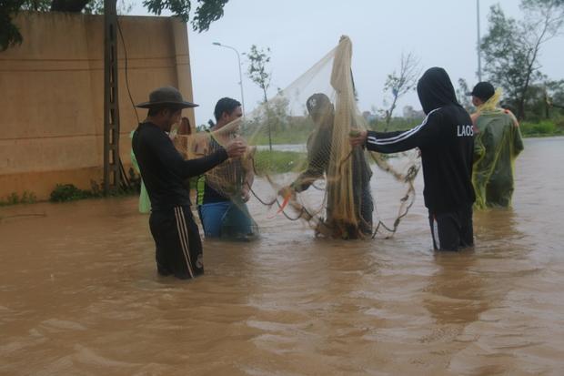 Sau bão số 10, người dân Quảng Bình quăng chài, thả lưới bắt cá giữa phố - Ảnh 4.
