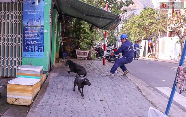 """Clip: Tiếp tục ra quân bắt chó thả rông ở Sài Gòn, nhiều chó nhà bị Đội săn bắt """"tóm"""" khiến chủ ngơ ngác - Ảnh 15."""