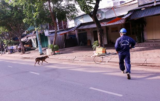 Vì nhiều con chó đã phát hiện nên chạy thoát rất nhanh trước lưỡi thòng lọng.