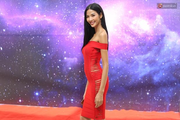 Hoa dâm bụt Hoàng Thùy nổi bật rực rỡ trong buổi sơ khảo miền Nam Hoa hậu Hoàn vũ - Ảnh 4.
