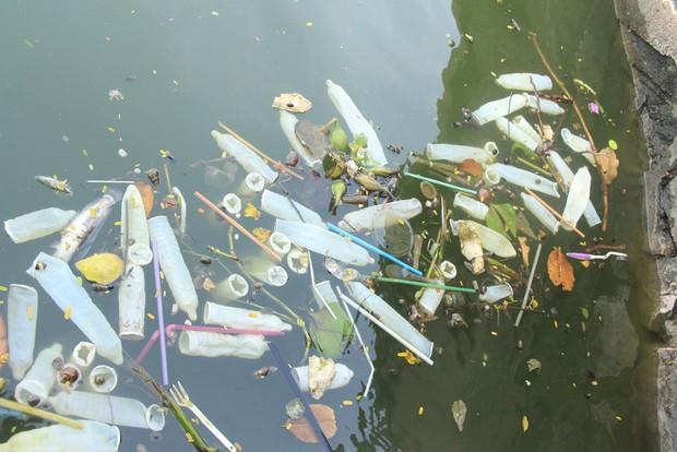 Hà Nội: Bao cao su nổi trắng một góc hồ Tây, người dân trèo thuyền ra vớt - Ảnh 2.