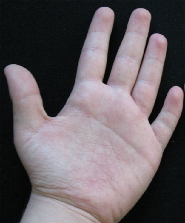 Đường chỉ tay của bạn có giống thế này không và bí mật ẩn giấu đằng sau đó - Ảnh 2.