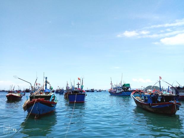 Xem xong bộ ảnh này, bạn sẽ hiểu vì sao người ta gọi Phú Yên là thiên đường mới của Việt Nam! - Ảnh 6.