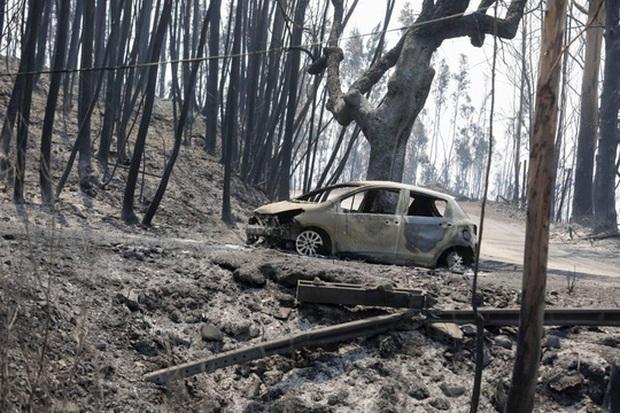 Đường cao tốc dẫn đến địa ngục ở Bồ Đào Nha - Ảnh 1.