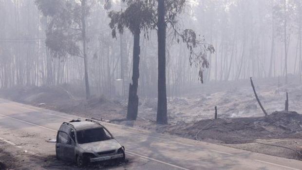 Đường cao tốc dẫn đến địa ngục ở Bồ Đào Nha - Ảnh 2.