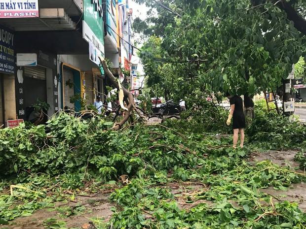 Chùm ảnh: Đường phố TP Vinh - Nghệ An tan hoang sau bão số 2 - Ảnh 1.