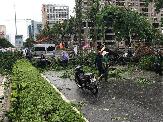 Chùm ảnh: Đường phố TP Vinh - Nghệ An tan hoang sau bão số 2 - Ảnh 8.